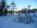 Швеция Сэлен Новый год 2008_16