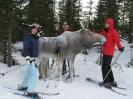 Швеция Сэлен Новый год 2008_7