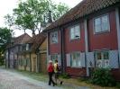 Поездка по Швеции Стокгольм и Готланд средневековый фестиваль 2009 _42